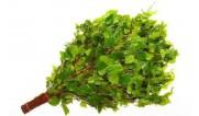 Веники и травы